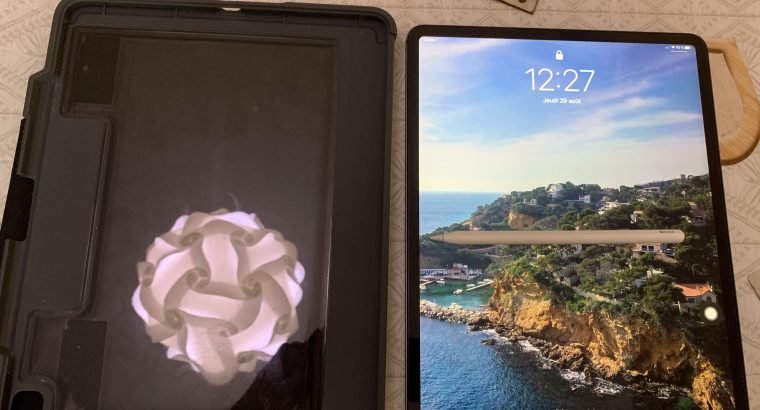 iPad Pro 12,9 1to wifi cellular