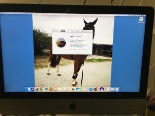 I Mac 21″5 Retina