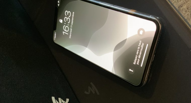 IPhone XS Max 256 go argent apple care +