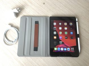 iPad Mini (5th Gen) 256Gb