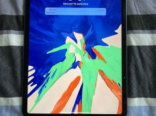 Apple iPad Pro 1ème gén 512Go, Wi-Fi + 4G