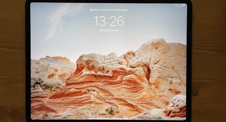 IPad Pro 12,9″ 256 Go + Pencil + Apple Care