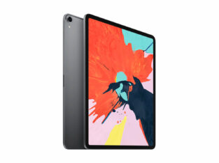iPad Pro 12.9 WiFi 1 TB SPACE G 2019 + Smart Cover