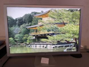 Apple Cinéma HD Display 30″